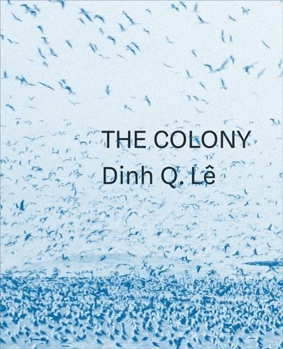 The Colony_Dinh Q. Le