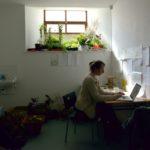 Katie Holten Artist Garden, Void Sites, 2013