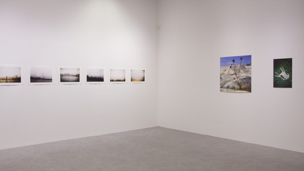 Before the Cypress Broke, 2021, Void Gallery, installation view. Void Gallery in partnership with Beirut Art Residency (BAR). Photographs by Harry Kerr, courtesy of Void Gallery